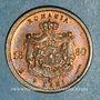 Monnaies Imitation de Lauer. Roumanie. Charles I, prince (1866-1881). 2 bani 1880