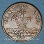 Monnaies Louis XIV (1643-1715). Jeton cuivre 1682