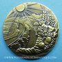 Monnaies Nice. 82e congrès des Notaires de France 1986. Jeton bronze. 30,8 mm