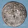 Monnaies Duché de Lorraine. Charles III (1545-1608). Deux deniers. Nancy (1556-1557)
