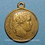 Monnaies Libération du Territoire - Meurthe-et-Moselle. 1873. Médaille laiton