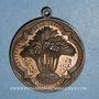 Monnaies Algérie. Staoueli. La Trappe d'Afrique (vers 1850). Médaille bronze