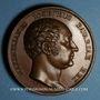 Monnaies Allemagne. Bavière. Maximilien Joseph I (1806-1825). Médaille bronze 40,6 mm. Gravée par F. Losch