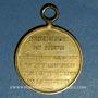 Monnaies Belgique. Révolution de 1830. Médaille bronze