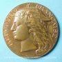 Monnaies Besançon. Concours régional d'agriculture 1893. Médaille en bronze. 50,5 mm signée Ponscarme H.