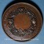 Monnaies Dampierre-sur-Salon. Comice agricole. Médaille bronze. 45,7 mm