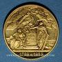 Monnaies Module 20 francs 1988. Marianne. R/: la Fraternité d'après N. Gatteaux.  1000 /1000.  6,45 g.