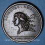 Monnaies Etats Unis. Libertas Americana. 1776. Médaille bronze. 48 mm