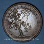 Monnaies Henri de la Tour d'Auvergne, dit Turenne (1611-1675). 1683. Médaille bronze. 53,2 mm