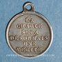 Monnaies Louis Philippe 1er. Médaille de la Charte de 1830.  Médaille argent