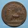 Monnaies Louis XIV. Campagne d'Allemagne. Médaille bronze 1678