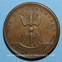 Monnaies Louis XIV. Combat de Sinsheim. Médaille bronze 1674