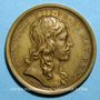 Monnaies Louis XIV. Naissance du Dauphin. Médaille bronze 1638