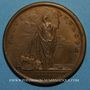 Monnaies Louis XIV. Paix de Ryswick. Médaille bronze 1697