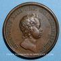 Monnaies Louis XIV. Prise de Tortosa. Médaille bronze 1648