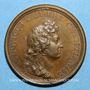 Monnaies Louis XIV. Renouvellement de l'Alliance avec les Suisses. Médaille bronze 1663