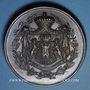 Monnaies Lyon. Comte de Castellane. 1851. Médaille en bronze. 61 mm. Gravée par L. Schmitt