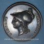 Monnaies Lyon. Société des amis du commerce et des arts. 1812. Médaille argent. Gravée par Chavanne