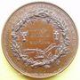 Monnaies Meaux. Société d'Agriculture, Sciences et Arts. 1843. Médaille en bronze. 51,2 mm