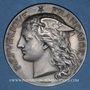 Monnaies Ministère du Commerce. Commission permanente des valeurs de douanes. 1899. Médaille argent