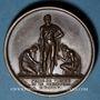 Monnaies Napoléon I. Prise de Vienne et de Presbourg. 1805. Médaille cuivre. 40,6 mm. Gravée par Andrieu...