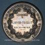 Monnaies Saint-Dié (Vosges). Comice agricole. 1877. Médaille argent