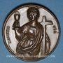 Monnaies Saint-Pierre. Médaille bronze. 37 mm