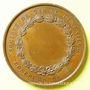 Monnaies Société de Tir de Lunéville. Concours. Médaille en cuivre. 51 mm. Signée Bescher. Poinçon : abeille