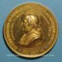 Monnaies Vatican. Pie IX (1846-78). Proclamation du dogme de l'infaillibité. Souverain Pontife 1870. Médaille