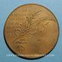 Monnaies Victor Hugo (1802-1885), né à Besançon. 1884. Médaille bronze
