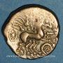 Monnaies Carnutes (région de Chartres). Statère d'électrum à la joue ornée, 1er s. av. J-C