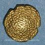 Monnaies Inde Britannique. Présidence de Madras. Pagode d'or 1740-1807.