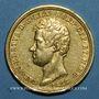 Monnaies Italie. Sardaigne. Charles Albert (1831-1849). 50 lires 1833 P. Turin. (PTL 900‰. 16,12 g)