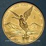 Monnaies Mexique. République. 1 onza 2011 Mo. (PTL 999‰. 31,10 g)