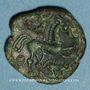 Monnaies Ambiani. Région d'Amiens. Bronze au cheval et au sanglier, vers 60 - 30/25 av. J-C