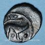Monnaies Ambiani (région d'Amiens). (vers 60-25 av. J-C). Bronze au sanglier et au cheval