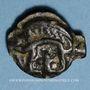 Monnaies Leuques. Région de Toul. Potin classe Ig, 1er siècle av. J-C