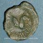 Monnaies Médiomatrices. Région de Metz. Bronze, classe I, vers 60-25 av. J-C