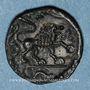 Monnaies Véliocasses. Région de Rouen - Suticcos. Bronze au lion, vers 60-30/25 av. J-C