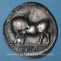 Monnaies Italie. Lucanie. Sybaris. Statère, 560-510 av. J-C