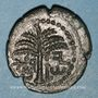 Monnaies Judée. 2e révolte juive - Révolte de Bar Kokhba (132-135). Bronze an 2 (=133-134). 21,76 mm