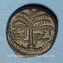 Monnaies Judée. 2e révolte juive - Révolte de Bar Kokhba (132-135). Petit bronze an 1 (=132-133). 18,57 mm