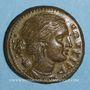 Monnaies Sicile. Syracuse. Agathocles (317-289 av. J-C). Bronze