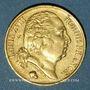 Monnaies 2e restauration. Louis XVIII (1815-1824). 20 francs tête nue 1817A. 900 /1000. 6,45 gr