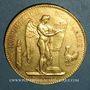 Monnaies 3e république (1870-1940). 100 francs Génie 1878A. (PTL 900 /1000. 32,25 g)