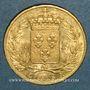 Monnaies Charles X (1824-1830). 20 francs 1828A. (PTL 900‰. 6,45 g)