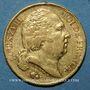Monnaies Louis XVIII (1815-1824). 20 francs buste nu 1817L. Bayonne. (PTL 900‰. 6,45 g)