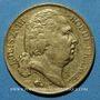 Monnaies Louis XVIII (1815-1824). 20 francs buste nu 1818Q. Perpignan. (PTL 900‰. 6,45 g)