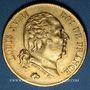 Monnaies Louis XVIII (1815-1824). 40 francs buste nu 1816L. Bayonne. (PTL 900‰. 12,90 g)