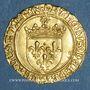 Monnaies Charles VIII (1483-1498). Ecu d'or au soleil. 2 émission (8 juillet 1494). Poitiers (annelet 8e)